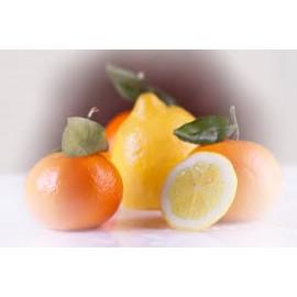 11 Kg. de Naranjas para Zumo + 5 Kg. de Mandarinas (16 Kg)