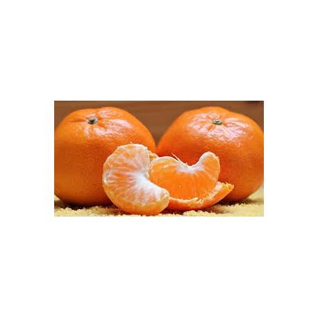 6 Kg.  Mandarinas Clemenvillas.