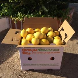 Limones. Caja de 15 Kg.