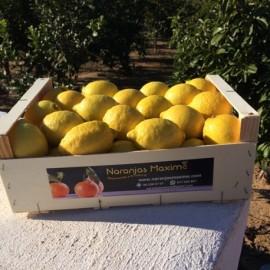 Naranjas de Mesa. Caja de 15 Kg.