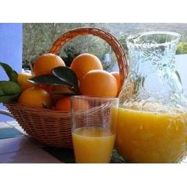 Naranjas de Zumo especial.